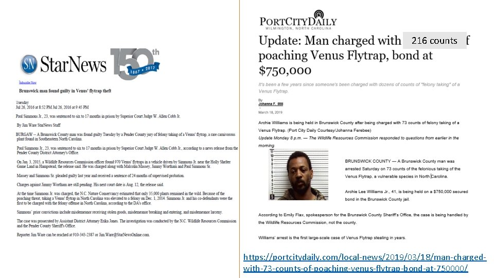216 counts https: //portcitydaily. com/local-news/2019/03/18/man-chargedwith-73 -counts-of-poaching-venus-flytrap-bond-at-750000/