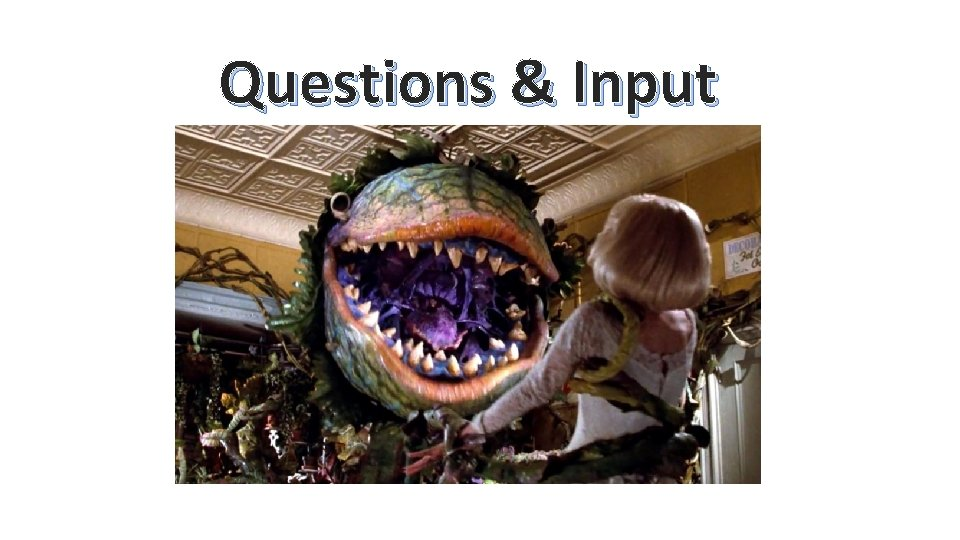 Questions & Input
