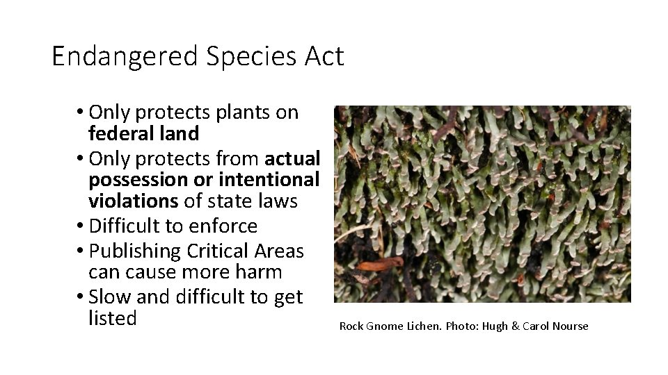 Endangered Species Act • Only protects plants on federal land • Only protects from