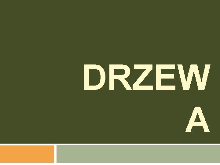 DRZEW A