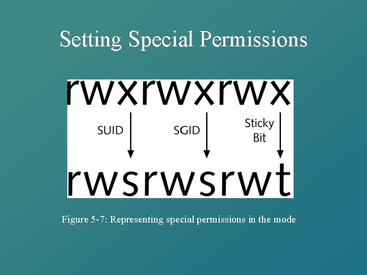Setting Special Permissions Figure 5 -7: Representing special permissions in the mode