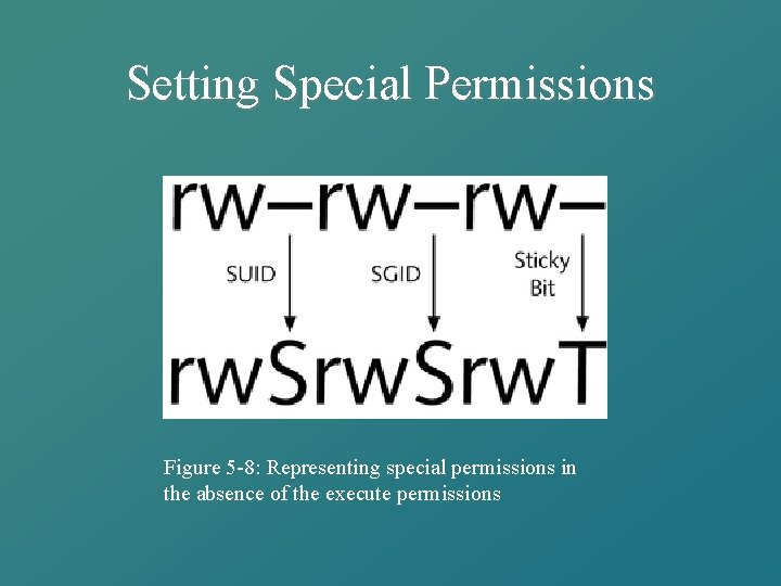 Setting Special Permissions Figure 5 -8: Representing special permissions in the absence of the