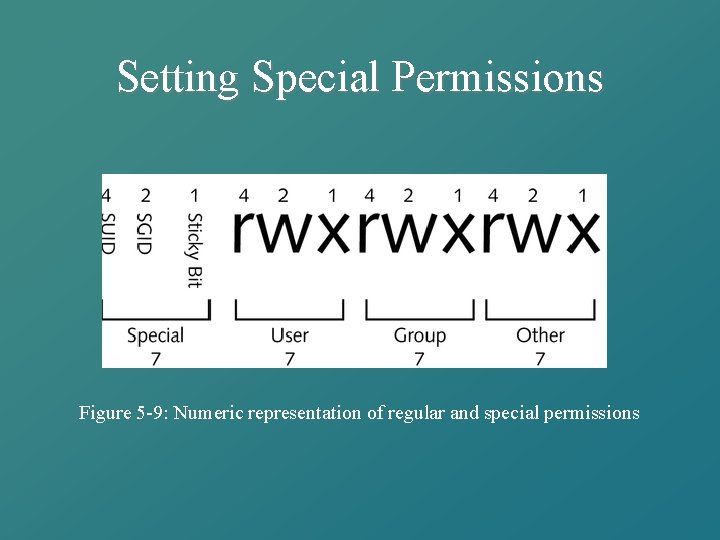 Setting Special Permissions Figure 5 -9: Numeric representation of regular and special permissions