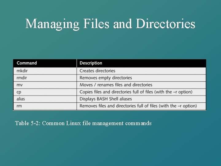 Managing Files and Directories Table 5 -2: Common Linux file management commands