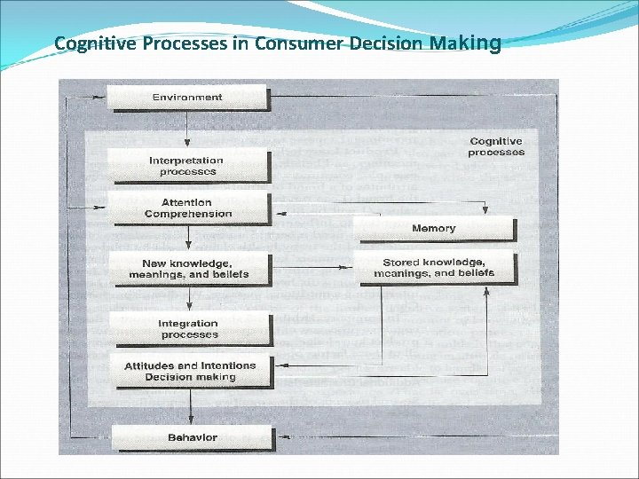 Cognitive Processes in Consumer Decision Making