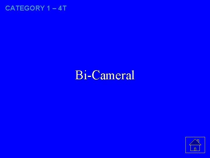 CATEGORY 1 – 4 T Bi-Cameral