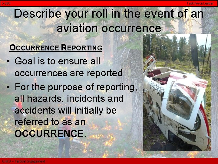 S-330 Task Force Leader Describe your roll in the event of an aviation occurrence
