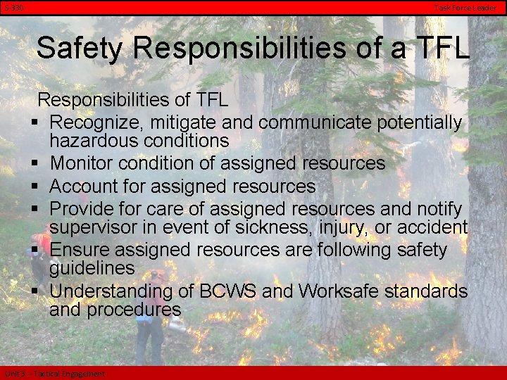 S-330 Task Force Leader Safety Responsibilities of a TFL Responsibilities of TFL § Recognize,