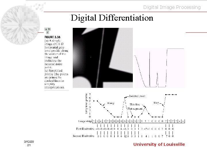 Digital Image Processing Digital Differentiation 3/12/20 21 University of Louisville