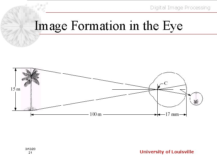 Digital Image Processing Image Formation in the Eye 3/12/20 21 University of Louisville