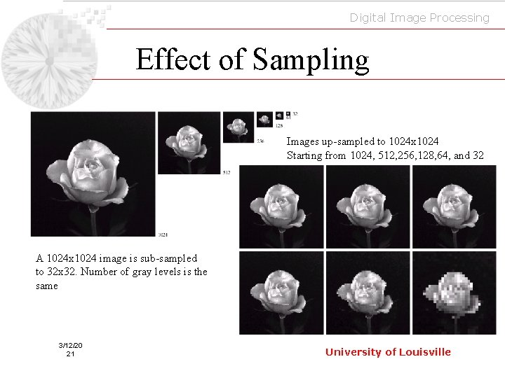 Digital Image Processing Effect of Sampling Images up-sampled to 1024 x 1024 Starting from