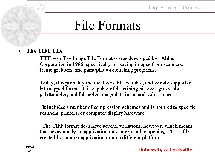 Digital Image Processing File Formats • The TIFF File TIFF -- or Tag Image