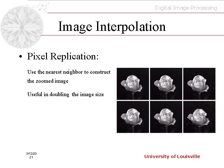 Digital Image Processing Image Interpolation • Pixel Replication: Use the nearest neighbor to construct