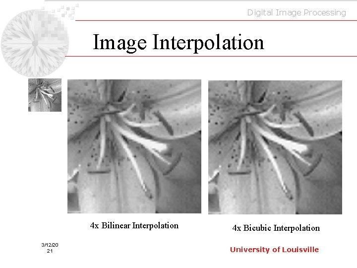 Digital Image Processing Image Interpolation 4 x Bilinear Interpolation 3/12/20 21 4 x Bicubic