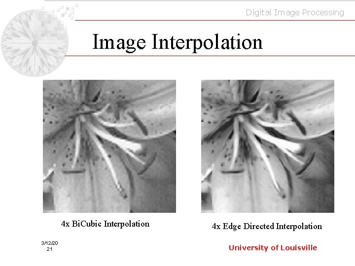 Digital Image Processing Image Interpolation 4 x Bi. Cubic Interpolation 3/12/20 21 4 x