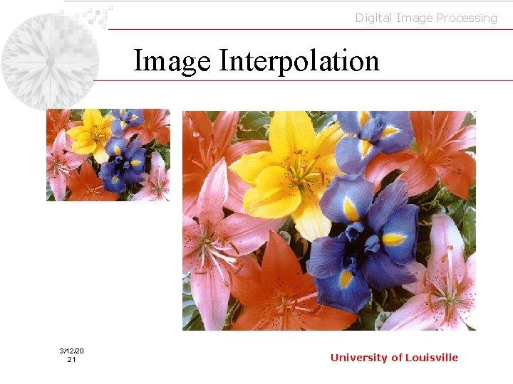 Digital Image Processing Image Interpolation 3/12/20 21 University of Louisville