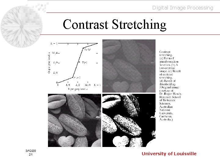 Digital Image Processing Contrast Stretching 3/12/20 21 University of Louisville