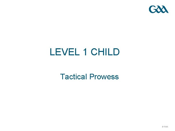 LEVEL 1 CHILD Tactical Prowess © GAA