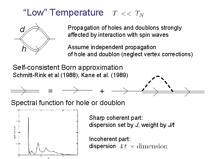 """""""Low"""" Temperature d Propagation of holes and doublons strongly affected by interaction with spin"""
