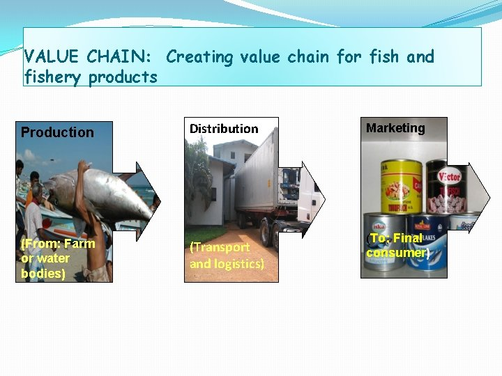 VALUE CHAIN: Creating value chain for fish and fishery products Production (From: Farm or