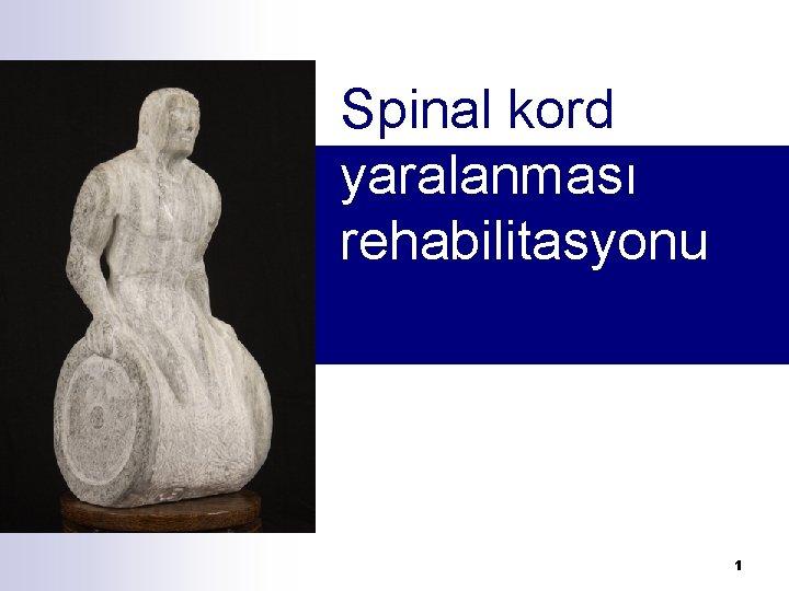 Spinal kord yaralanması rehabilitasyonu 1