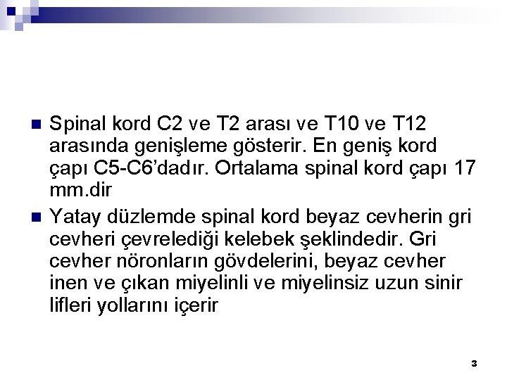 n n Spinal kord C 2 ve T 2 arası ve T 10 ve