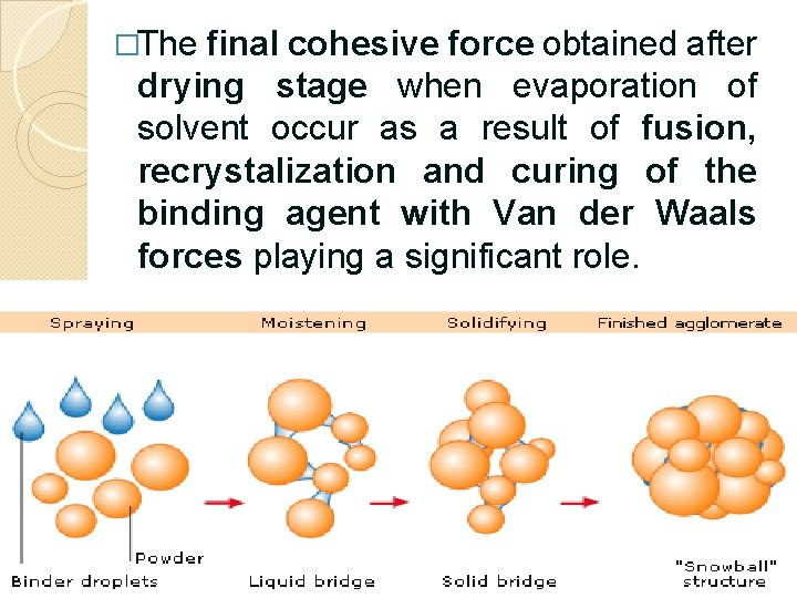 �The final cohesive force obtained after drying stage when evaporation of solvent occur as