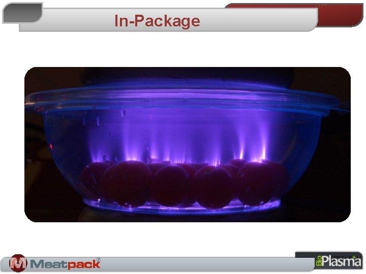 In-Package Alexander Fridman – Plasma Chemistry - 2008