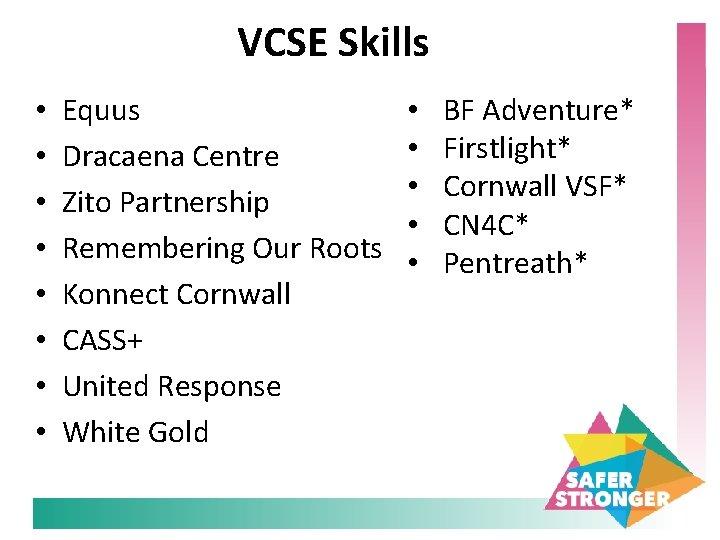 VCSE Skills • • Equus Dracaena Centre Zito Partnership Remembering Our Roots Konnect Cornwall