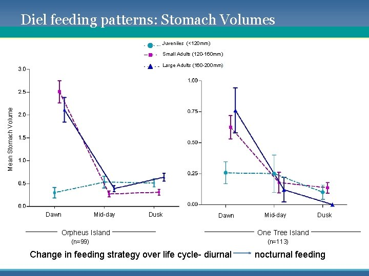 Diel feeding patterns: Stomach Volumes Juveniles (<120 mm) Small Adults (120 -160 mm) Mean