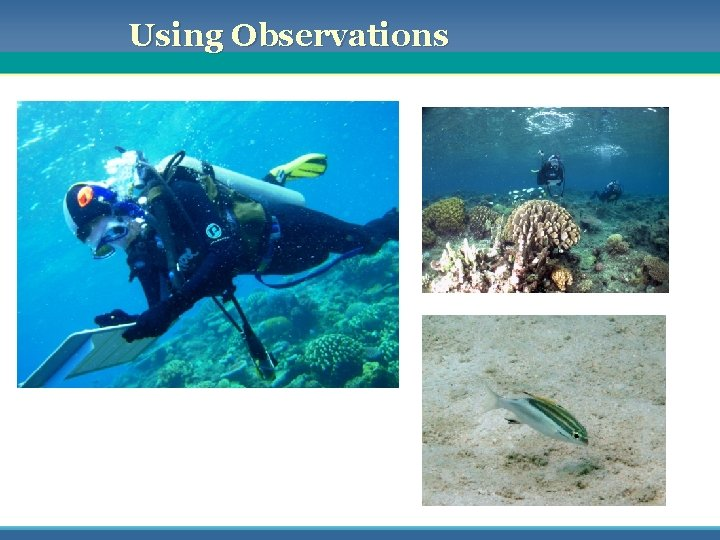 Using Observations