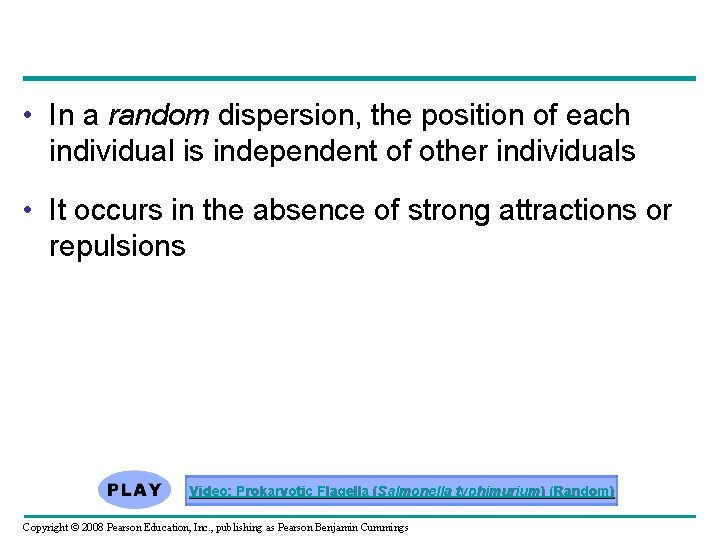 • In a random dispersion, the position of each individual is independent of