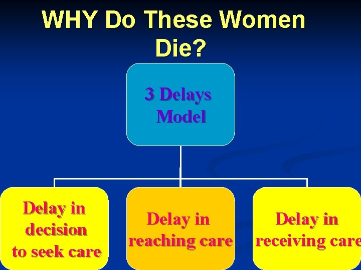 WHY Do These Women Die? 3 Delays Model Delay in decision to seek care