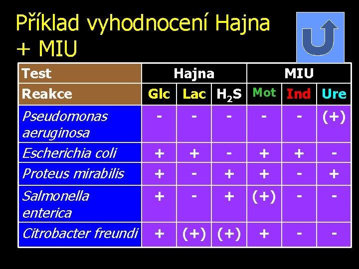 Příklad vyhodnocení Hajna + MIU Test Reakce Pseudomonas aeruginosa Escherichia coli Proteus mirabilis Salmonella