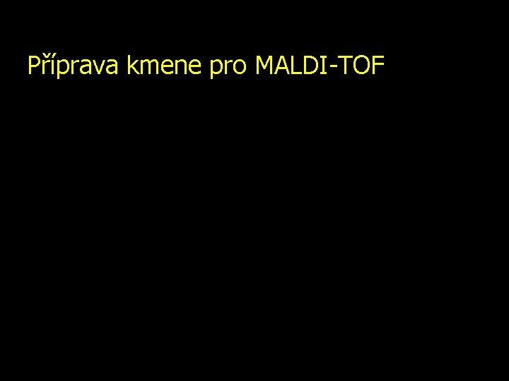 Příprava kmene pro MALDI-TOF