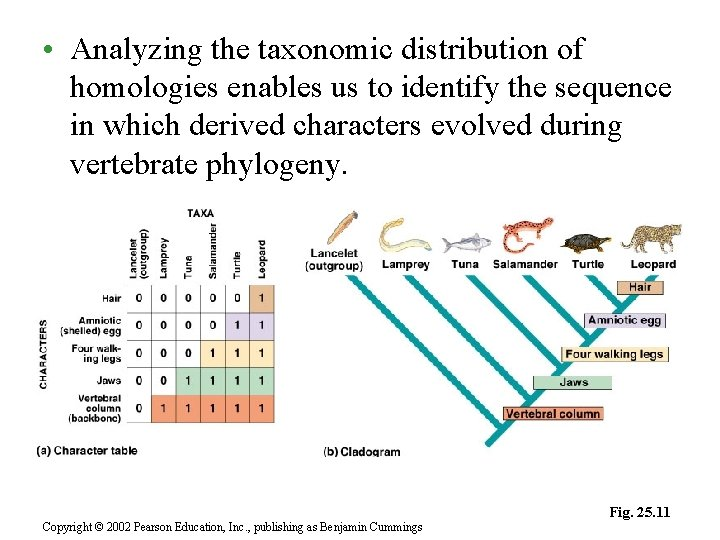 • Analyzing the taxonomic distribution of homologies enables us to identify the sequence