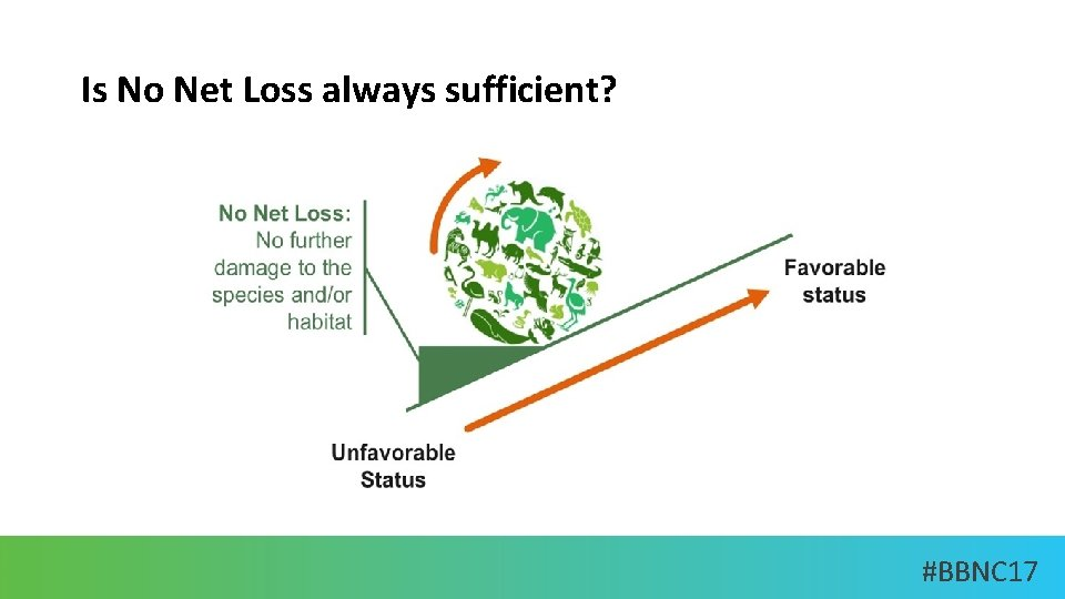 Is No Net Loss always sufficient? #BBNC 17
