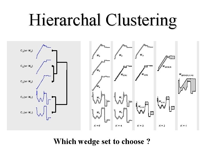 Hierarchal Clustering C 3 (or W 3) W 3 W 3 C 5 (or