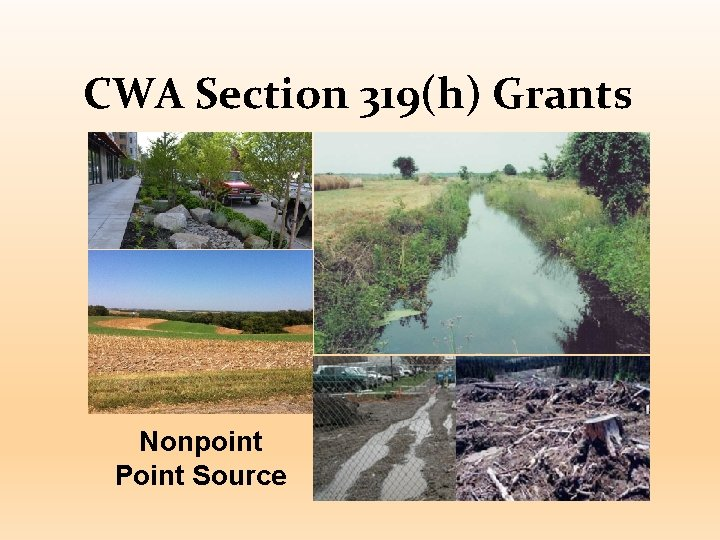CWA Section 319(h) Grants Nonpoint Point Source