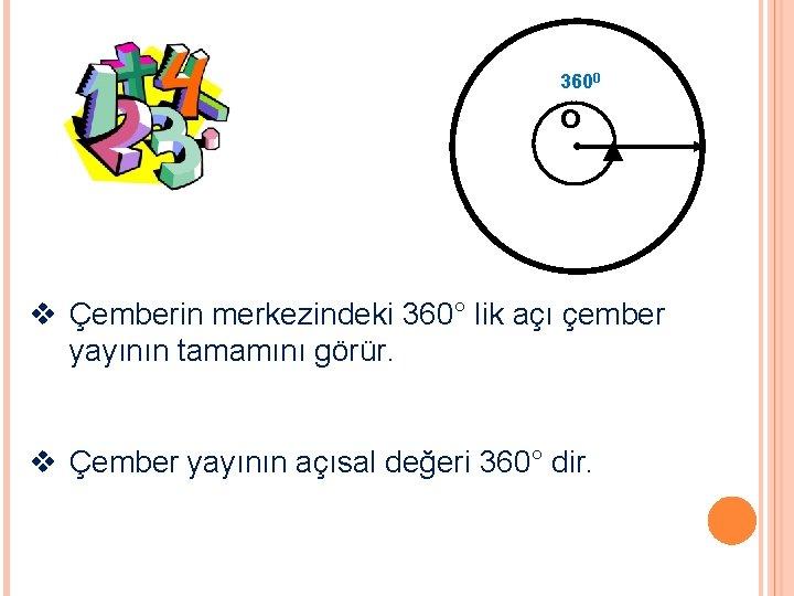 3600 o v Çemberin merkezindeki 360° lik açı çember yayının tamamını görür. v Çember