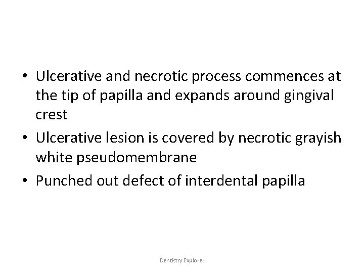 • Ulcerative and necrotic process commences at the tip of papilla and expands