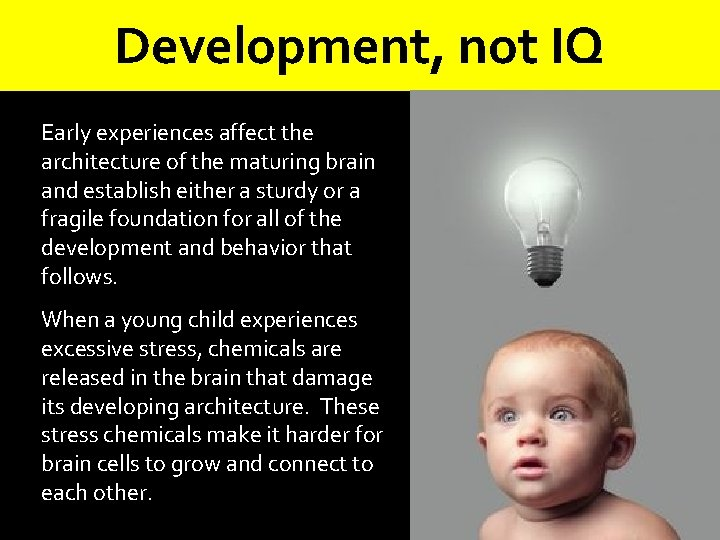 Development, not IQ Early experiences affect the architecture of the maturing brain and establish