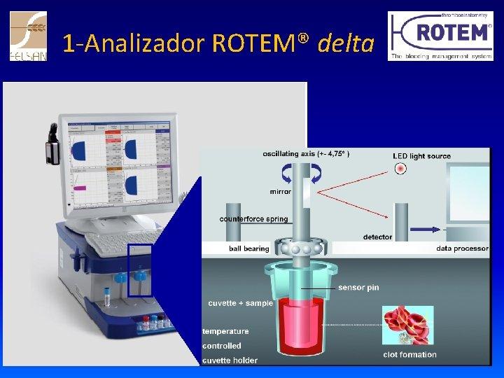 1 -Analizador ROTEM® delta