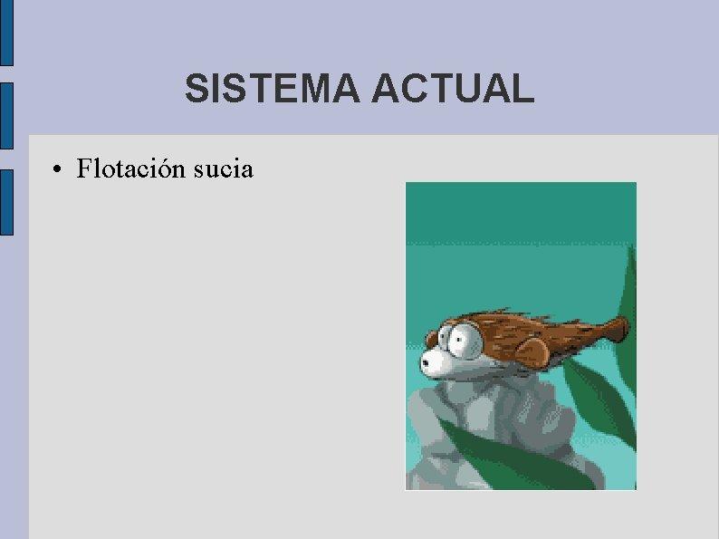 SISTEMA ACTUAL • Flotación sucia