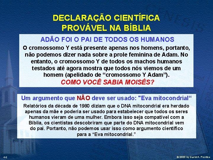 DECLARAÇÃO CIENTÍFICA PROVÁVEL NA BÍBLIA ADÃO FOI O PAI DE TODOS OS HUMANOS O