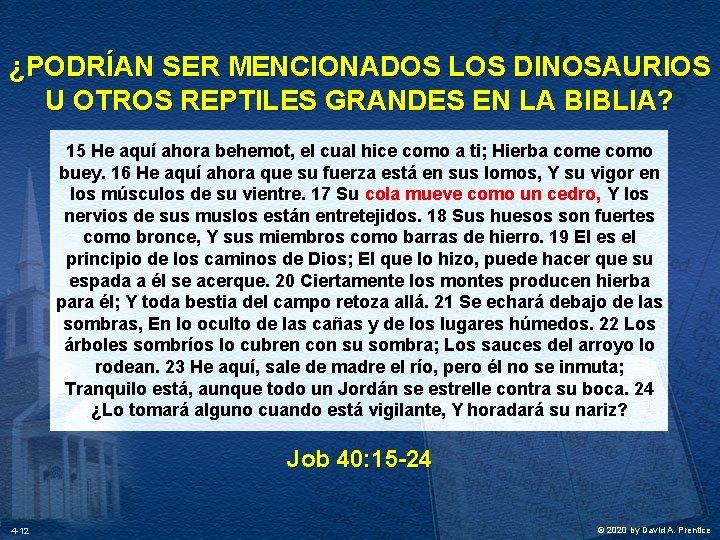 ¿PODRÍAN SER MENCIONADOS LOS DINOSAURIOS U OTROS REPTILES GRANDES EN LA BIBLIA? 15 He