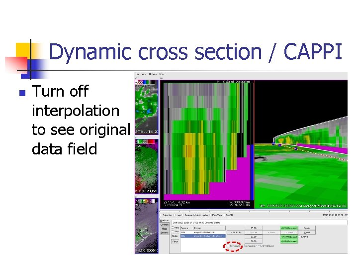 Dynamic cross section / CAPPI n Turn off interpolation to see original data field