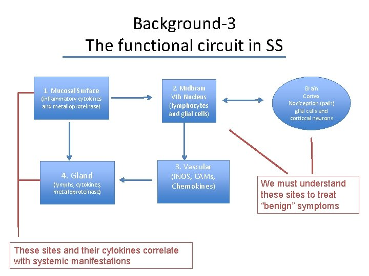 Background-3 The functional circuit in SS 1. Mucosal Surface (inflammatory cytokines and metalloproteinase) 4.