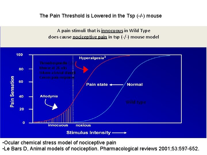 The Pain Threshold is Lowered in the Tsp (-/-) mouse A pain stimuli that