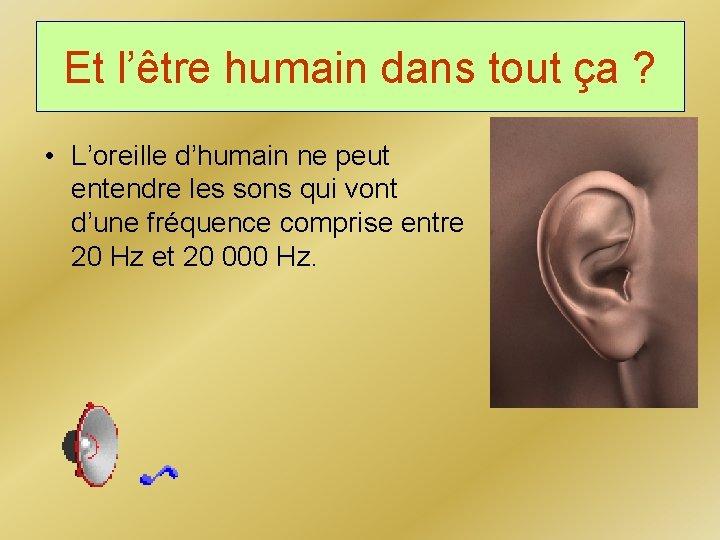 Et l'être humain dans tout ça ? • L'oreille d'humain ne peut entendre les